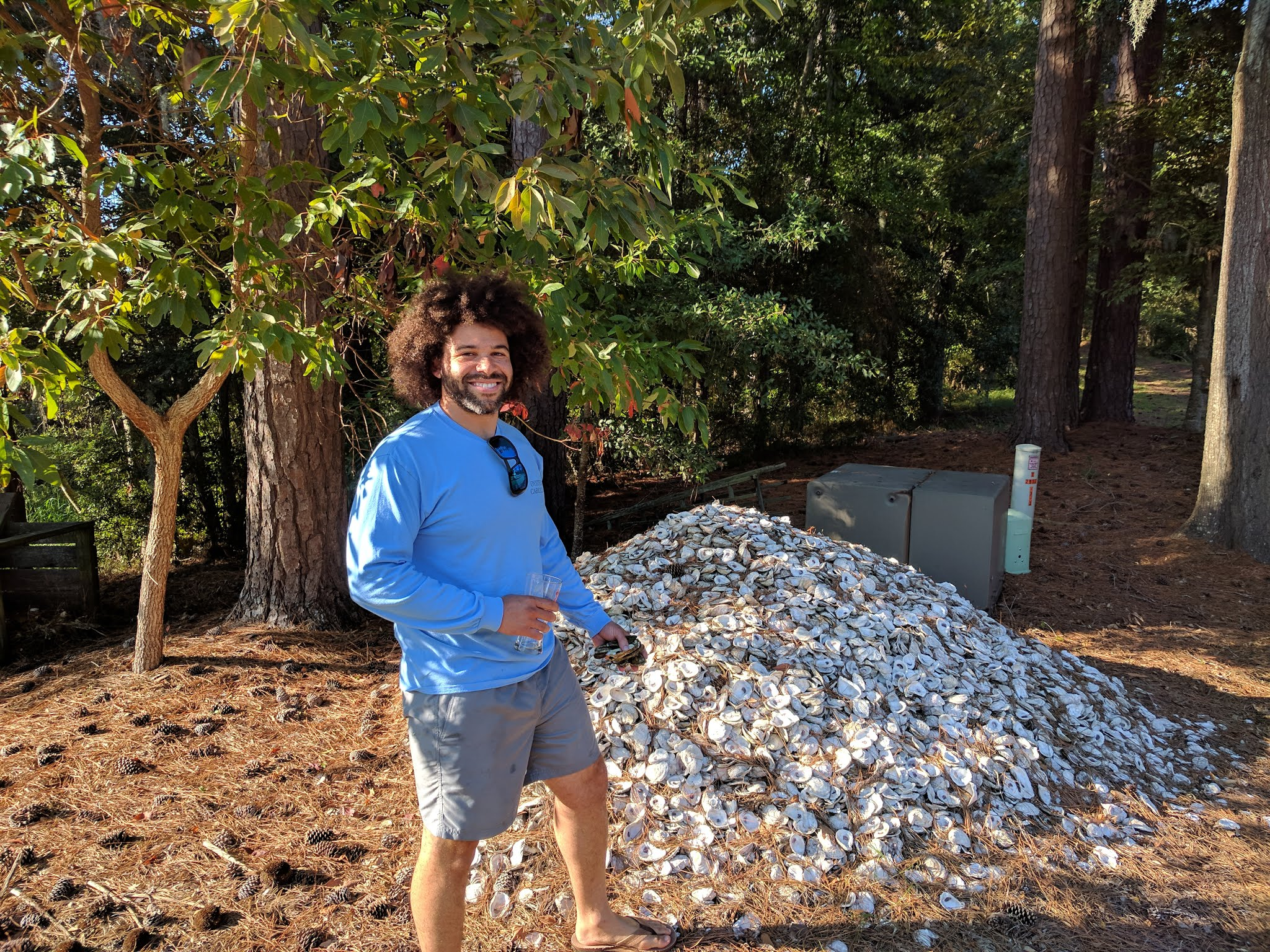Pile of Oyster shells