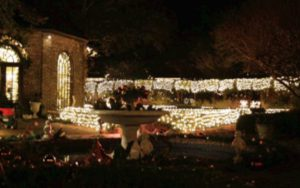 Elizabethan Gardens Winter Lights