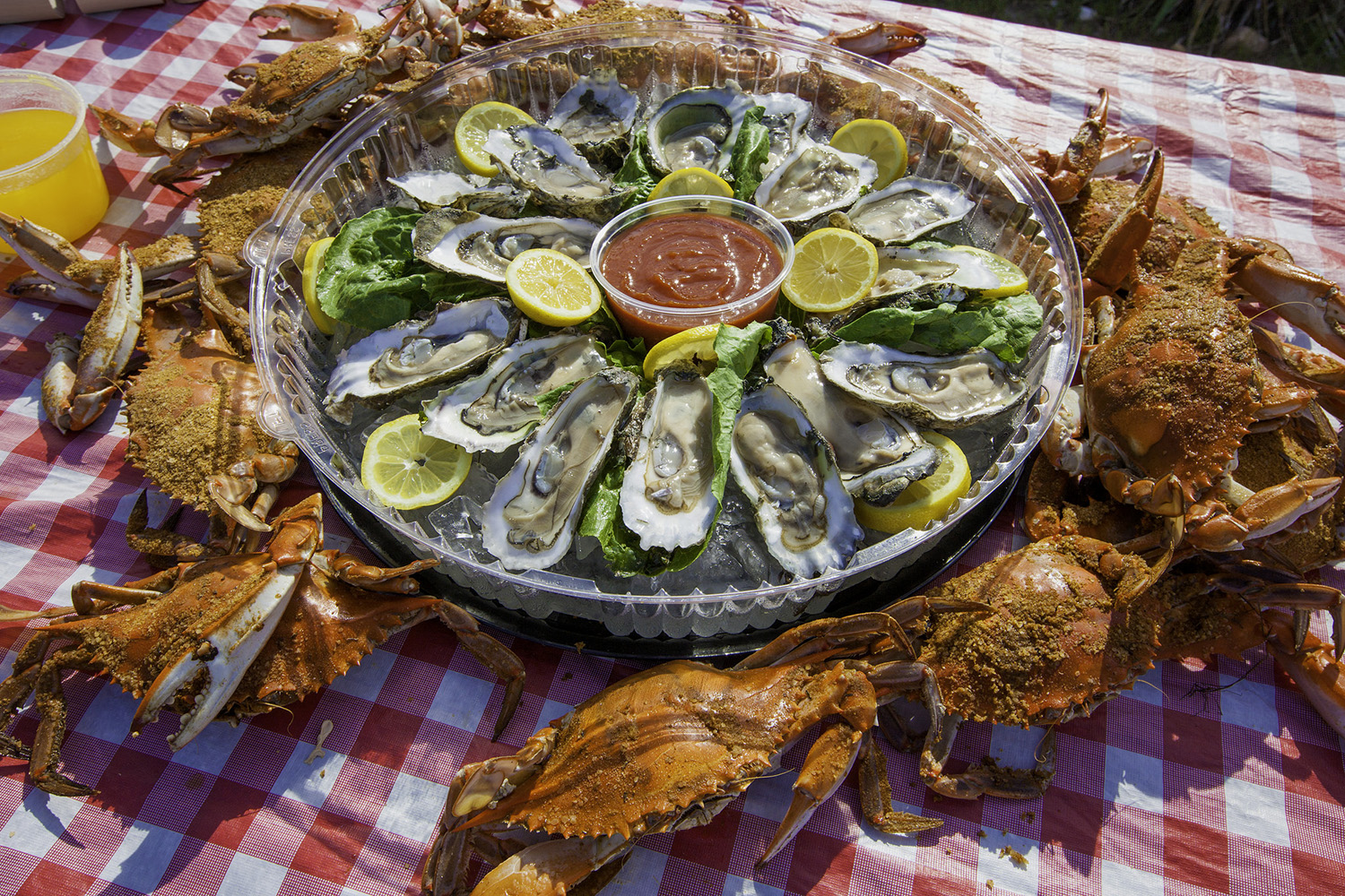 Best Seafood Restaurants on the Outer Banks
