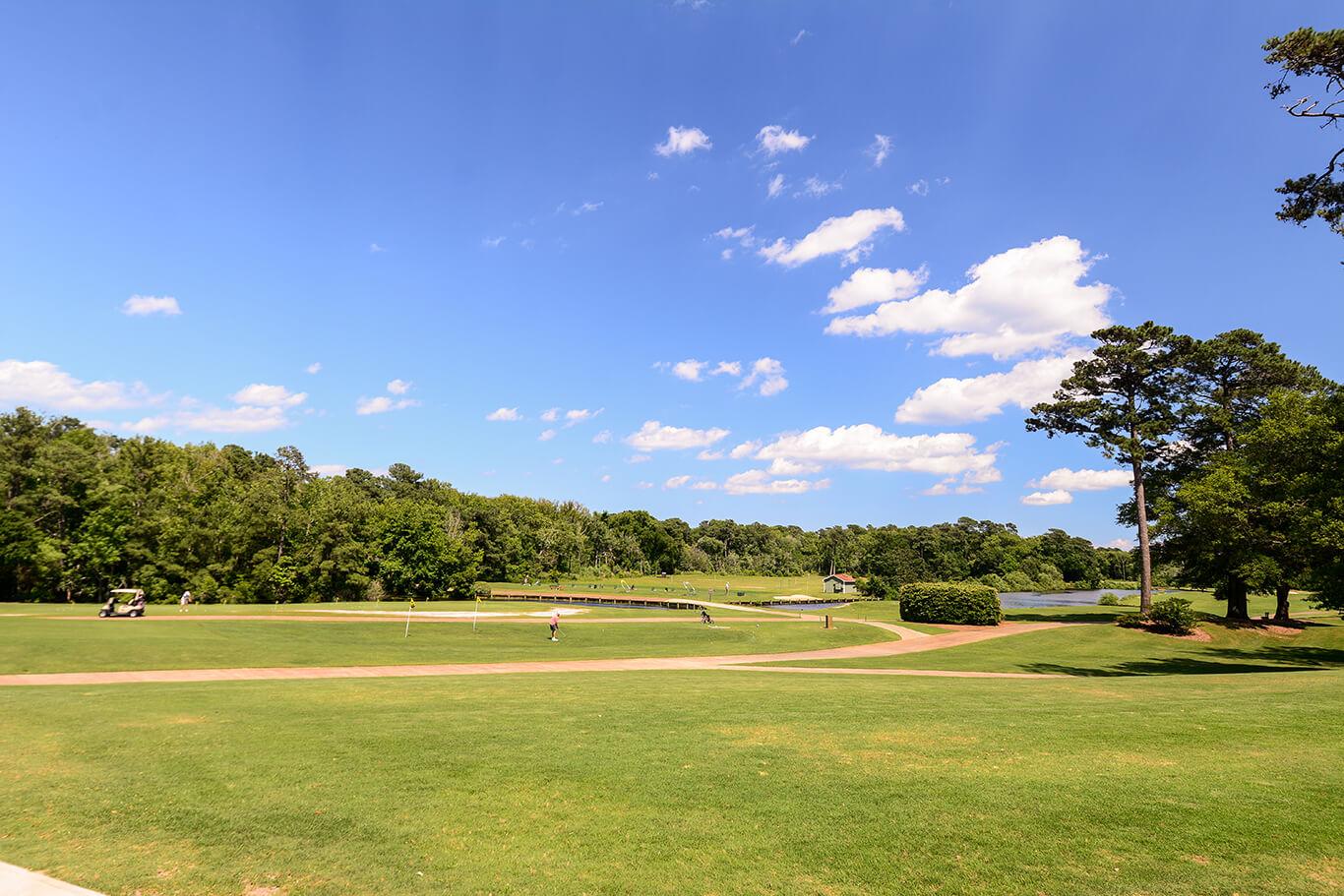 Duck Woods Golf
