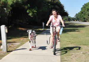 bike corolla greenway