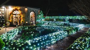 Winterlights at The Elizabethan Gardens