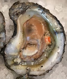 crab slough oyster