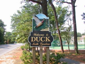 Welcome to Duck