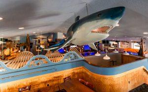 Mako's restaurant shark